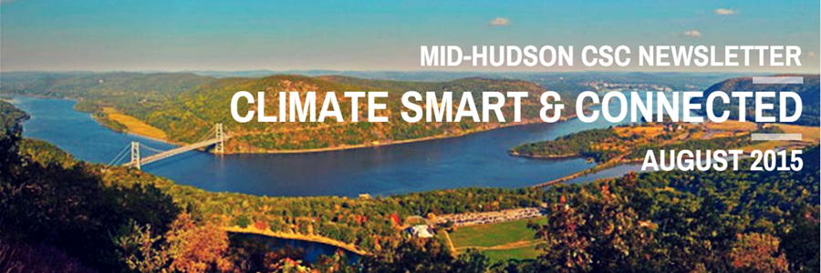 Visit the Mid-Hudson CSC website!