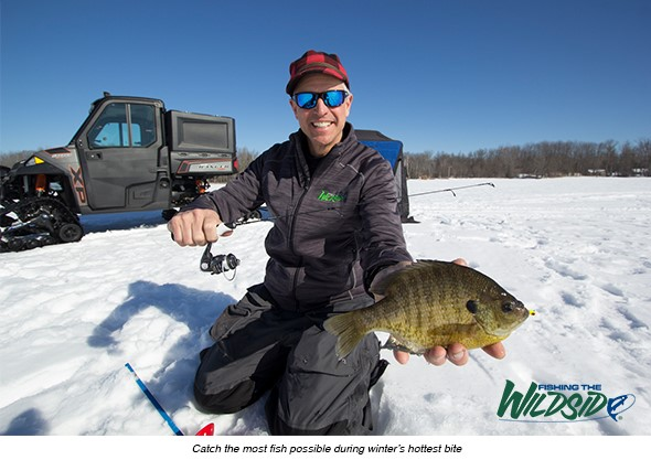 Chip Leer Early Ice Bluegill