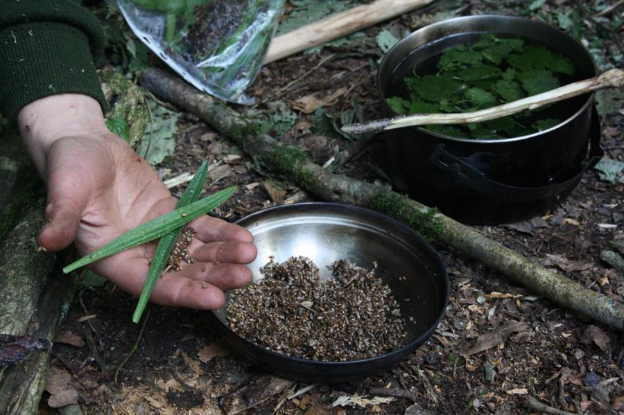 Processing wild foods on the Hunter Gatherer Challenge