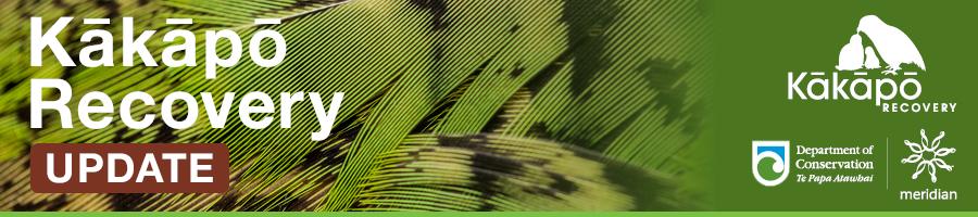 Kakapo Recovery update