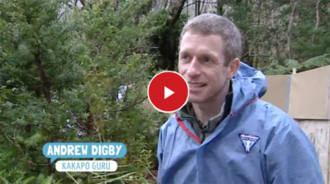 Andrew Digby on Seven Sharp