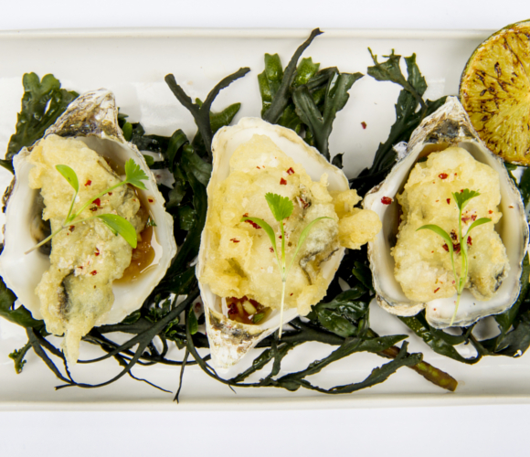 Tempura Oysters with Wasabi Dressing