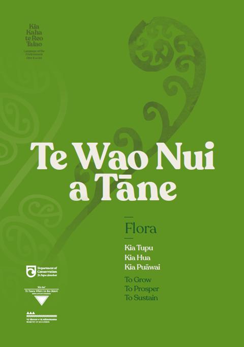 Te Wao Nui a Tane