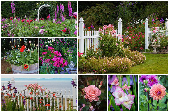 Sea Cliff Gardens B&B