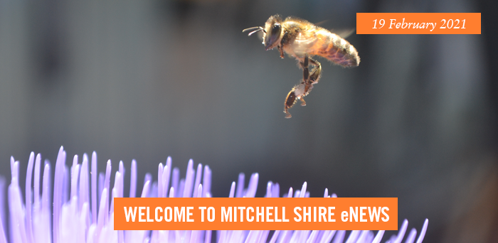words: welcome to Mitchell Shire eNews, 19 February 2021