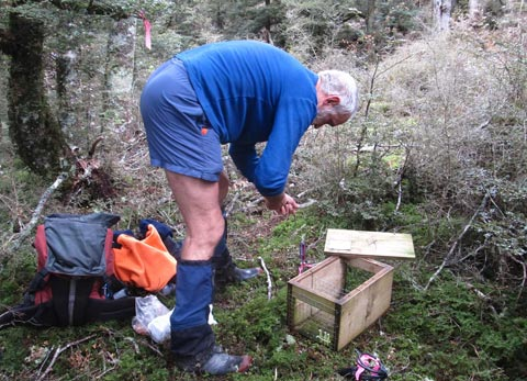 Peter Dilks sets up a monitoring station in the Blue Mountains.
