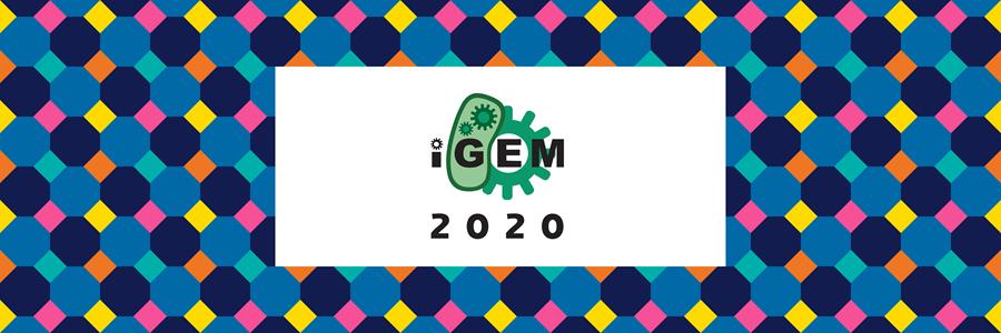 img: iGEM 2020 Newsletter banner