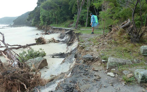 Cyclone Fehi damage at Abel Tasman National Park.