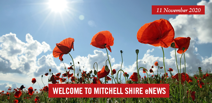 words: welcome to Mitchell Shire eNews, 11 November 2020