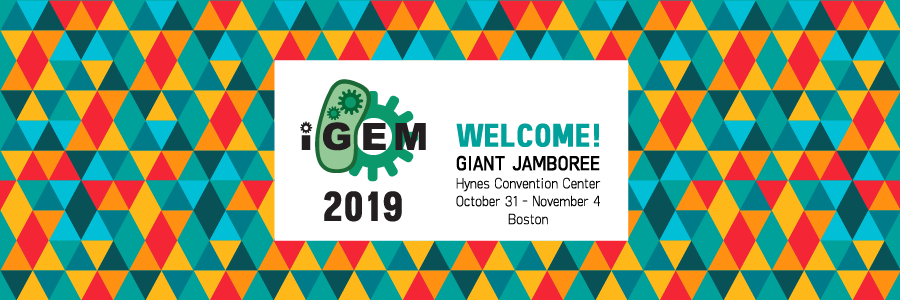 iGEM 2019: Welcome!