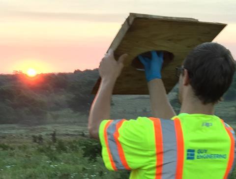 GUY biologist checking an ABB trap