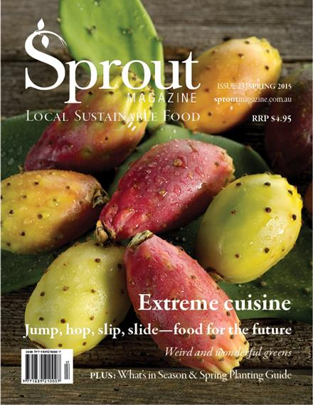 Sprout Winter 2015 cover
