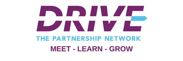 Drive The Network Logo