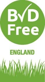 BVDFree England Logo