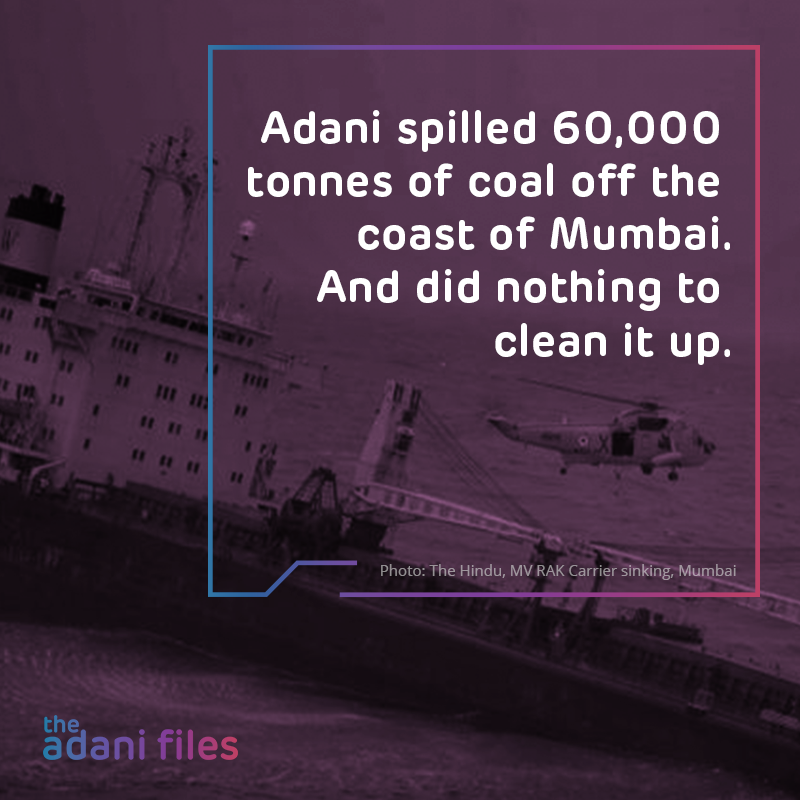 Cover image of 'the adani files'