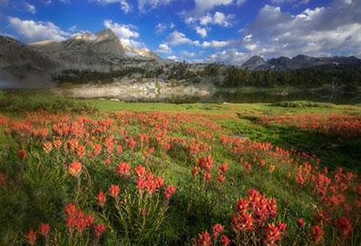 Yosemite Conservancy