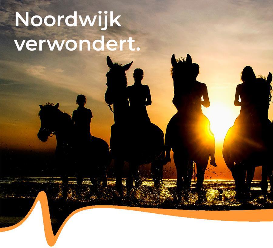 campagne Noordwijk verwondert