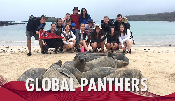 Global Panthers