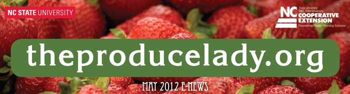 The Produce Lady E-Newsletter