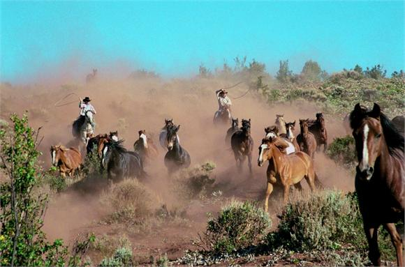 Wranglers heading into the Ranch with the horses
