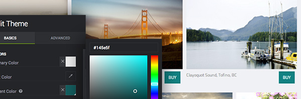 Customize Your Buy Button