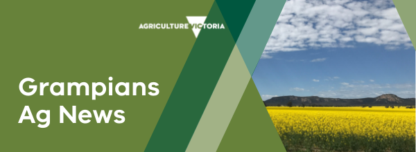 Barwon South-West Ag news