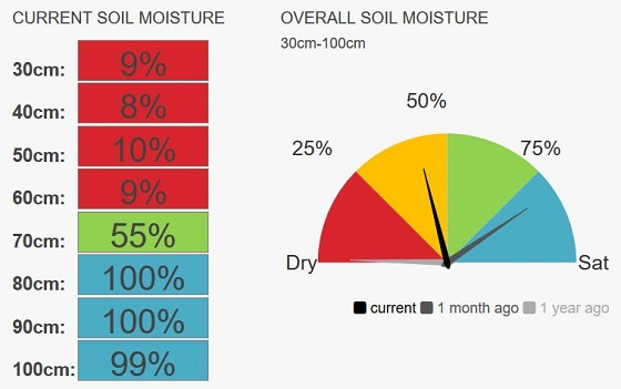 Youanmite speedo moisture currently 45%