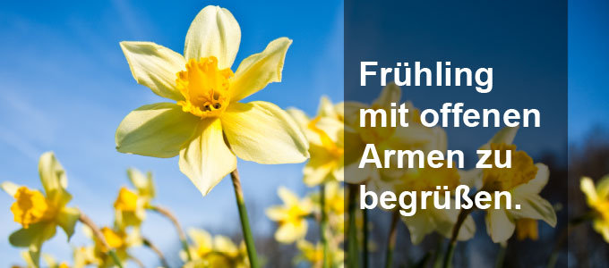Frühling mit offenen Armen zu  begrüßen.