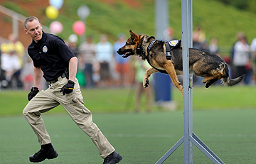 The K-9 Unit demonstration by the Beaverton Police Department is one of the more popular events each year at Party in the Park.
