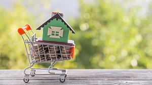 Shopping trolley with coins and model house