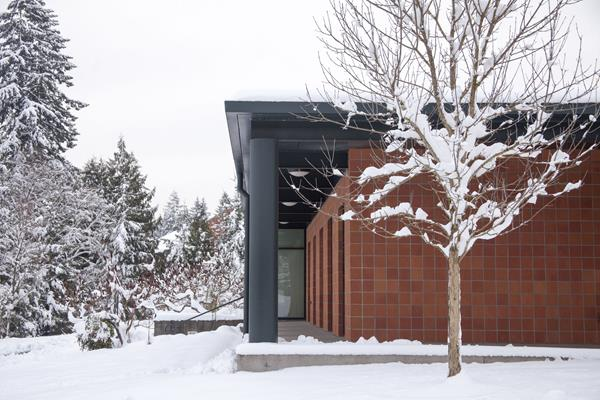 Snow on tree and campus building