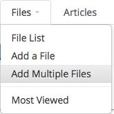 Add Multiple Files Selector
