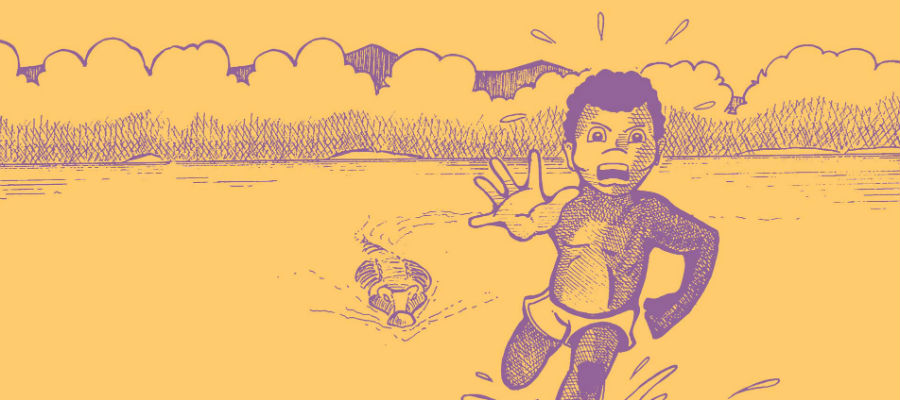A celebration of Aboriginal and Torres Strait Islander children's books and storytelling