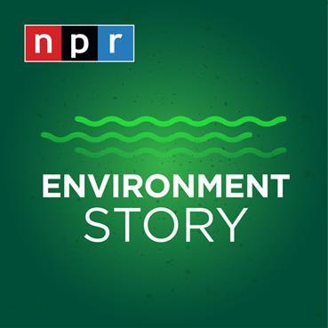 Logo for NPR's Environment Story podcast