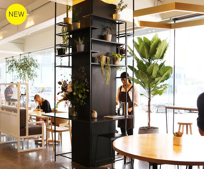 From the creators of Dear Jervois comes a brand spanking new inner city cafe