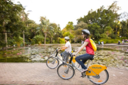 CityCycle bike share grows in popularity