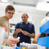 Associate Professor of Molecular Biology Ioannis Eleftherianos works with senior chemistry major Nate Bachtel in lab
