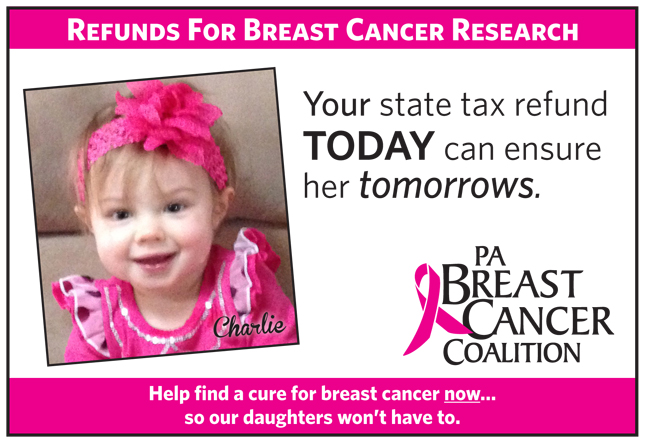 Donate your state income tax refund to breast cancer research!
