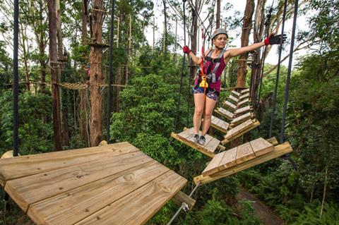 New TreeTop Challenge
