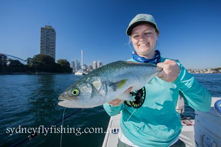 A decent salmon from Sydney Harbour