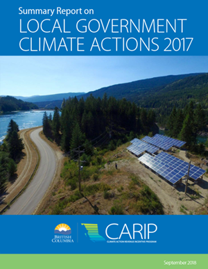 2017 CARIP report cover