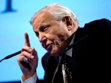 Sir David Attenborough. © David Bebber.