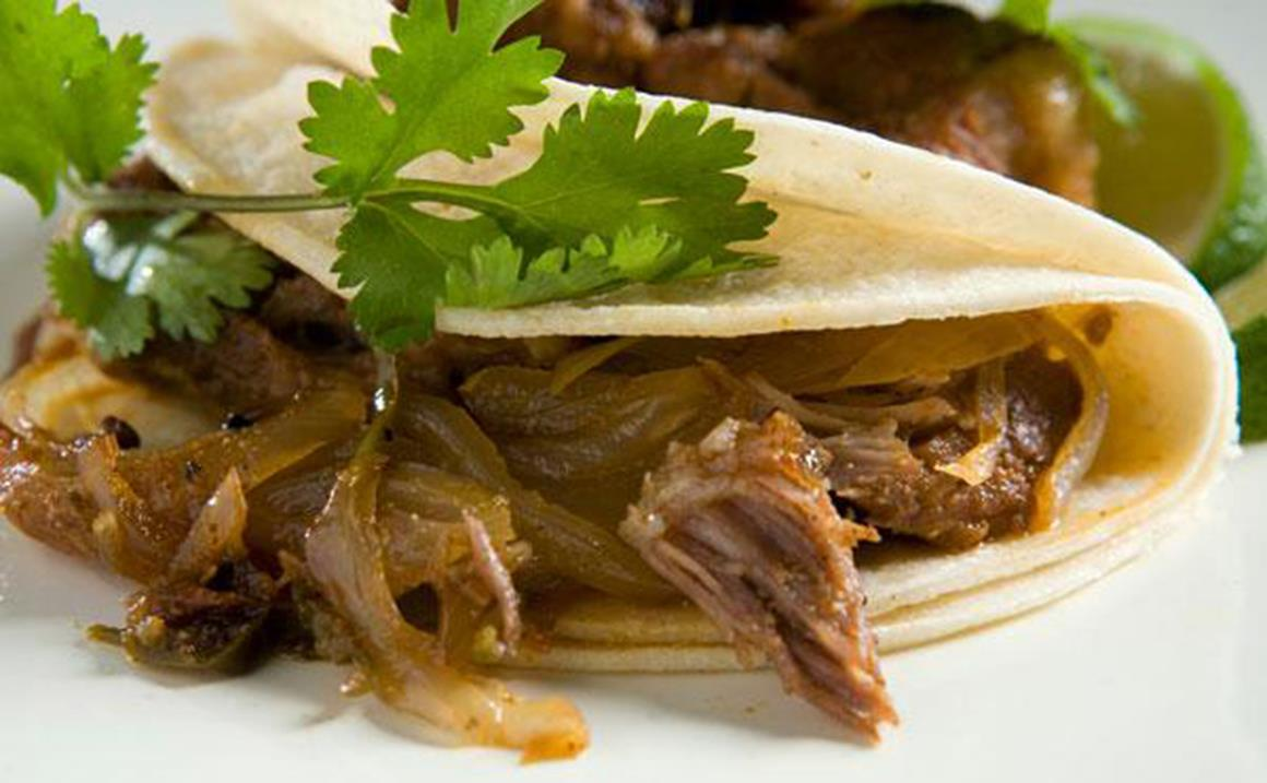 Carnitas taco with a sprig of cilantro