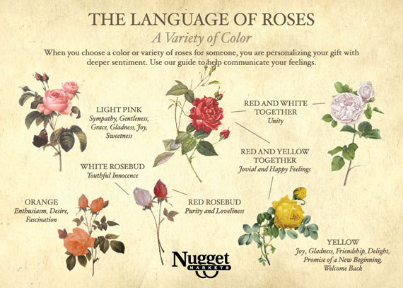 The Language of Roses