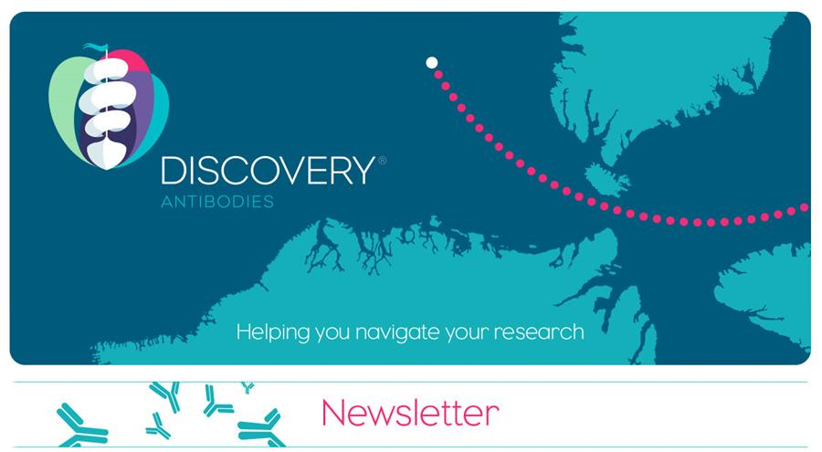 Discovery Antibodies
