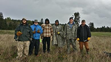 2015 Veteran Conservation Corps interns removing hybridized paintbrush at Glacial Heritage Preserve, near Joint Base Lewis-McChord in Washington. Courtesy: VCC