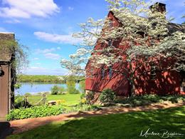 Marlene Brigham - Demming House Spring