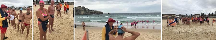 Surf Races