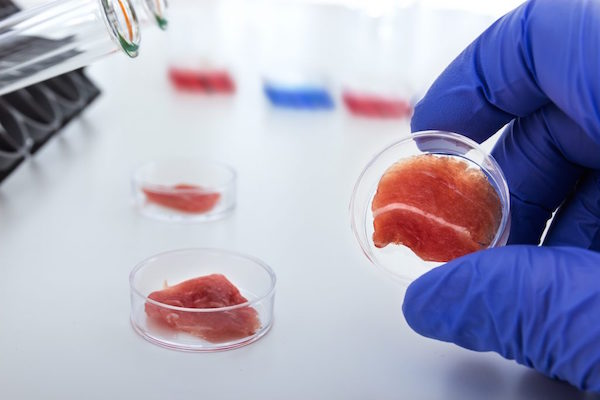 LAB-GROWN CHICKEN MEAT IS SEEING CROWDFUNDING SUCCESS WITH SUPERMEAT