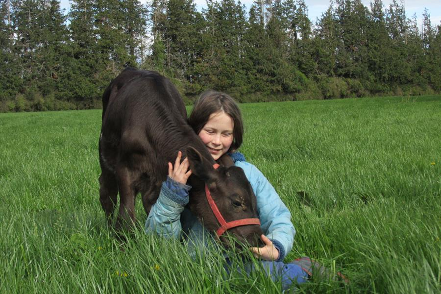 Anne Barrow was the winner of the 13-18 years' category in the 2017-18 IHC Calf and Rural Scheme photo competition.